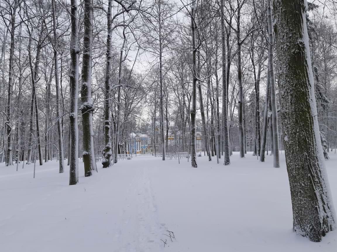 palais de catherine sous la neige