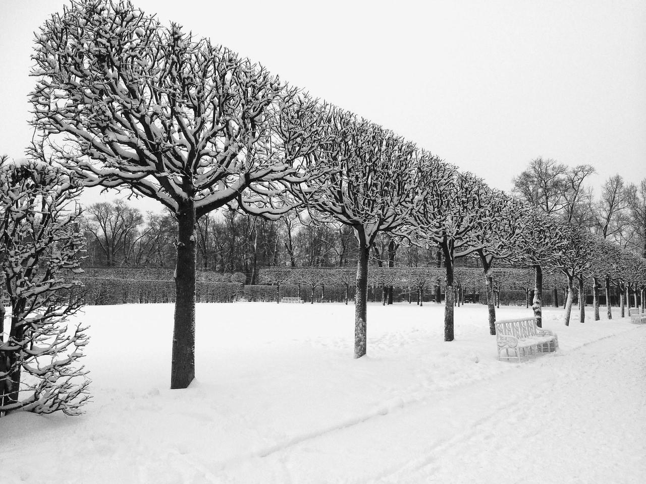 la ville de saint petersbourg sous la neige