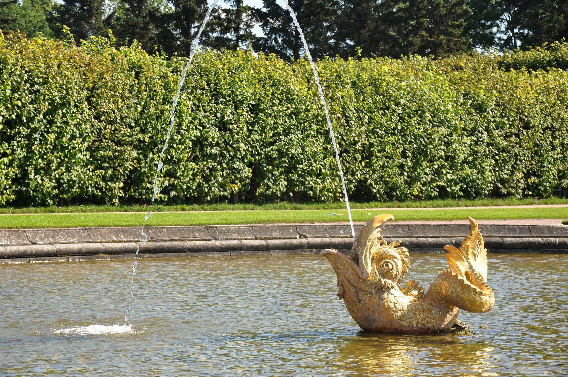 l`eau a peterhof parc