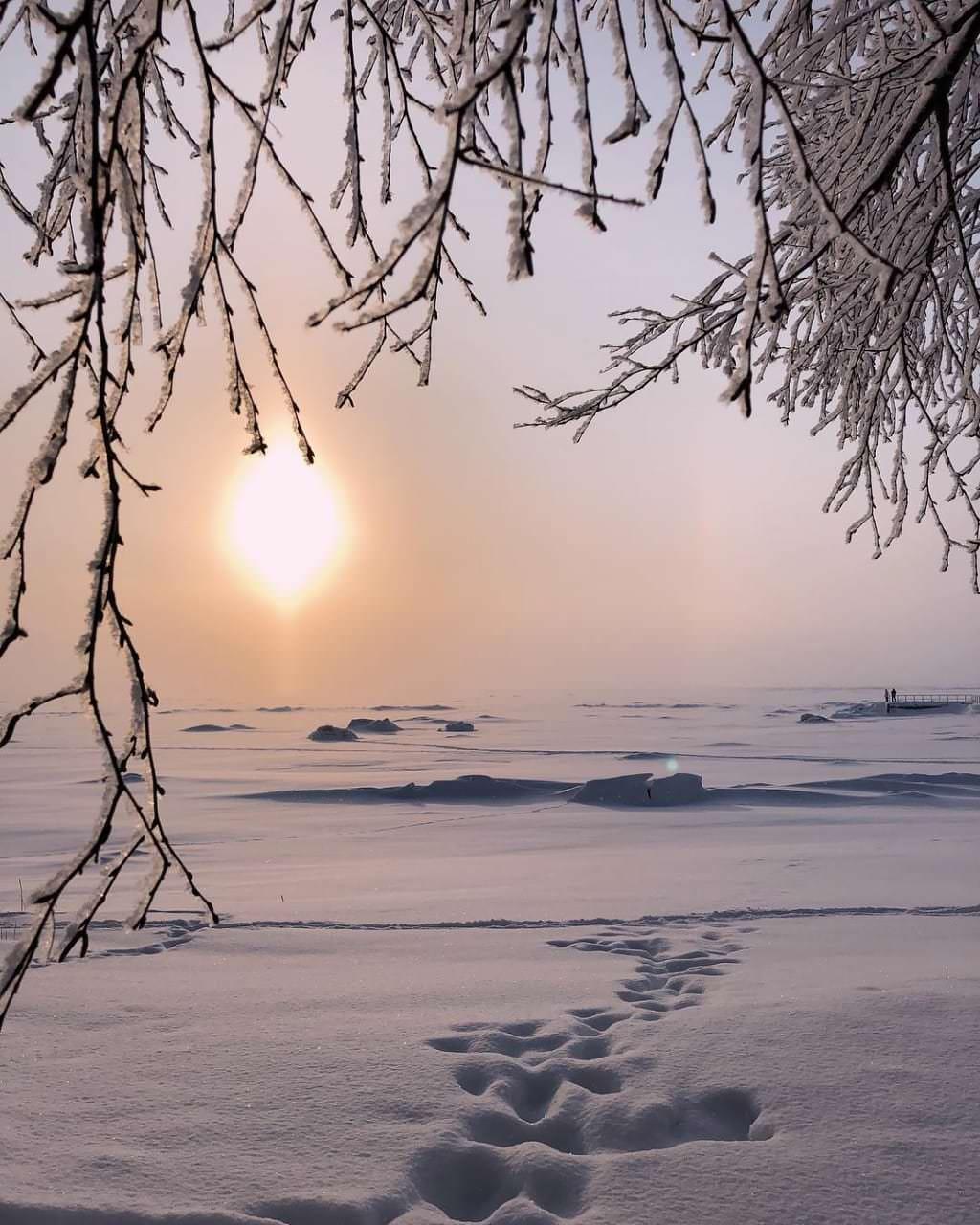 le golf de finland gele